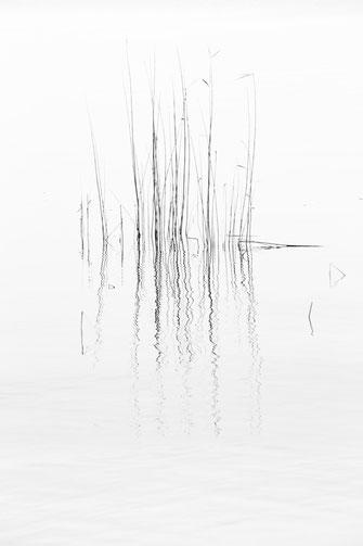 Berlin, Müggelsee, schwarz-weiß, Minimalismus, minimalism, minimalist, minimalistisch, Holger Nimtz, Wandbild, Kunst, fine art,