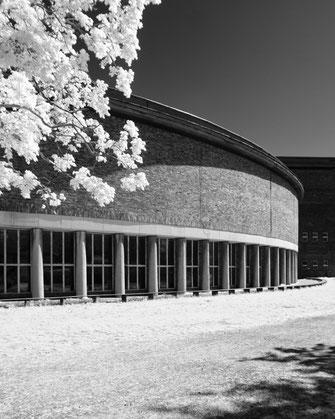 Infrarotfotografie, Berlin, Funkhaus, Infrarot, Holger Nimtz, Infrared, Fotografie, Photography, Infrarotaufnahme, Fotokunst, Wood-Effekt,