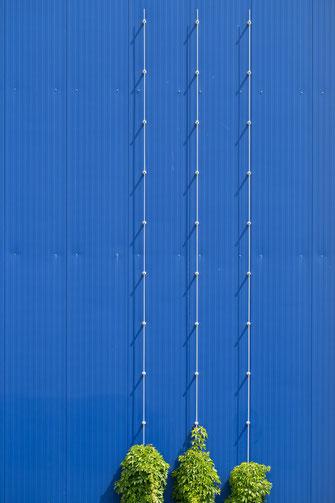 architecture, blau, blue, green, grün, Minimalismus, minimalism, minimalist, minimalistisch, Holger Nimtz, Wandbild, Kunst, fine art,