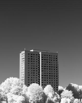 Infrarotfotografie, Berlin, Minimalismus, Infrarot, Holger Nimtz, Infrared, Fotografie, Photography, Infrarotaufnahme, Fotokunst, Wood-Effekt,