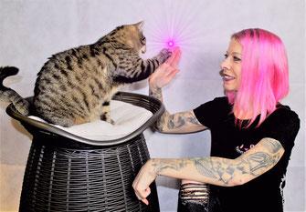 Schnurrtopia© - Alles für die Katz