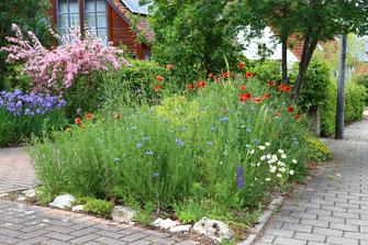 Blühflächen im Garten - LBV-Bildarchiv Foto: Peter Bria