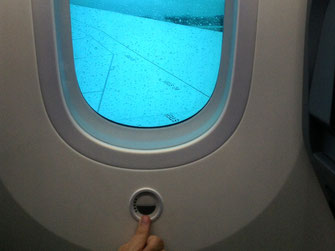 dreamliner windows