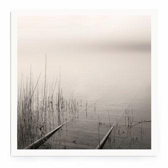 """Redd At The Lake"" Art Print von Lena Weisbek"