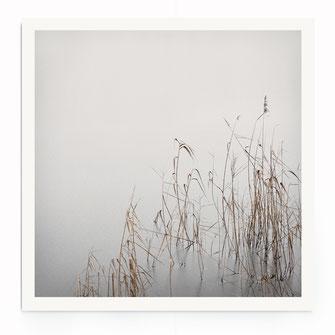 """Grey January"" Art Print kaufen"