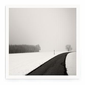 """""""Curve In Snow"""" Art Print kaufen"""