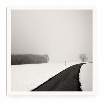 """Curve In Snow"" Art Print kaufen"