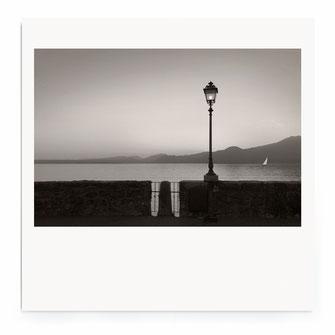 """Field Art"" Art Print von Lena Weisbek"