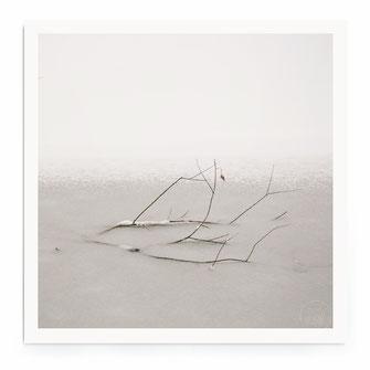 """""""Frozen In Pond"""" Art Print von Lena Weisbek"""