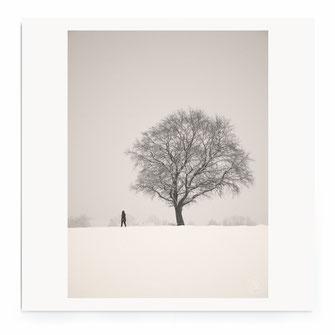 """""""Winterscape. Bavaria."""" - Minimalistische Landschaft mit Felder, Wald und Vogelin schwarz-weiß."""