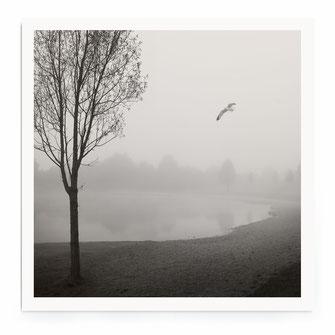 Silence At The Lake II Print