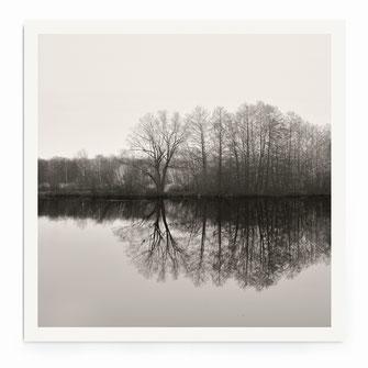 """Lake Shore"" Art Print von Lena Weisbek"