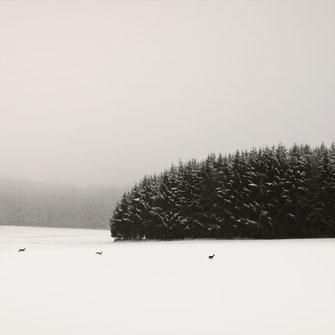 """""""WinterScape Bavaria""""  Art Print von Lena Weisbek kaufen"""