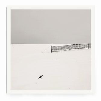 """""""The Bird"""" Art Print von Lena Weisbek"""