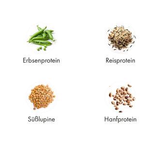 OrganicAlpha, Alphafod, Alphafoods, Superfood, Protein, Eiweiß, Veganprotein