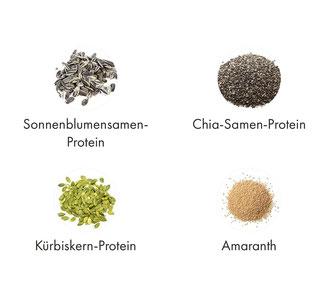 OrganicAlpha, Alphafood, Alphafoods, Eiweiß, Protein, Proteine, Haselnussprotein
