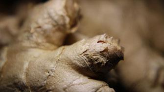 Ingwer - Wurzel mit Heilkraft - Vegansports