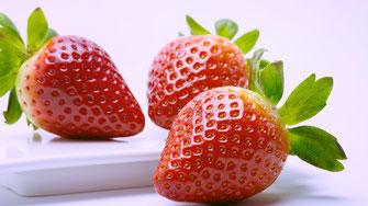 Erdbeere - reich an Vitamin C - Vegansports