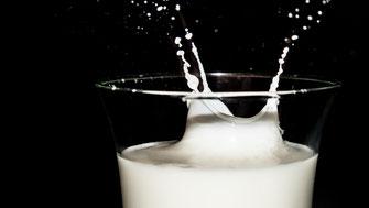 Macht Milch krank - Vegansports