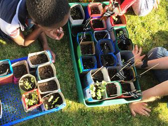 Gartenprojekt zum ganzehitlichen Erziehungsansatz im ´s Mauganest