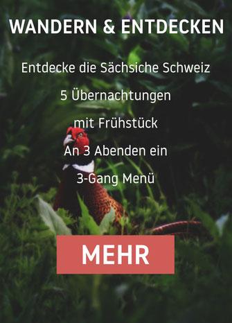 Entdecke die Sächsiche Schweiz 5 Übernachtungen mit Frühstück und jeden Abend ein 3-Gang Menü