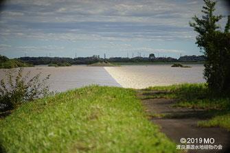 画像:2019/10/13 渡良瀬川(左)から第1調節池(右)に流れ込んでいる様子