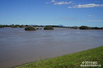 画像:2019/10/13 増水した渡良瀬川