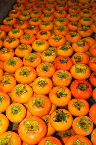 柿酢の原料の柿を洗浄しているところ