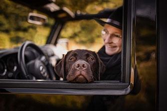 Labrador Retrieverschaut aus dem Fenster vom Jeep Wrangler  fotografiert von der Ostschweizer Hunde Fotografin Monkeyjolie