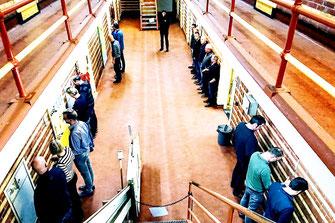 escaperoom de Uitbraak - Actief Veenhuizen - Gevangenismuseum