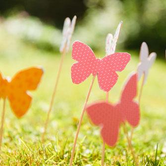 Butterfly-Wedding