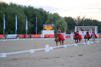 Bild: Wünschendorf Pferdesport Wünschendorf Erzgebirge