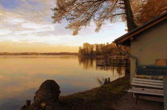Dieses Foto zeigt ein Ufer am Melliner See bei Berlin in herbstlicher Stimmung.