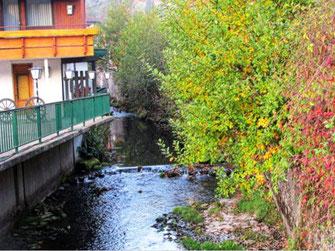 """Dieses Foto zeigt die Enz in Enzklösterle im Schwarzwald. Das """"Heidelbeerdorf"""" ist bekannt für seine Wellness-Einrichtungen und die Skipisten."""