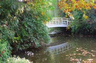Dieses Foto zeigt eine Brücke in Baden-Baden. Sie eignet sich ausgezeichnet, um herbstliche Impressionen einzufangen.