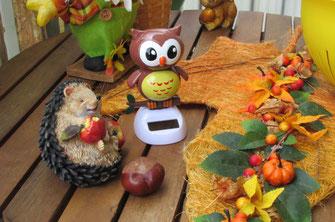 Dieses Foto zeigt eine lustige Herbstdekoration für die Wohnung.