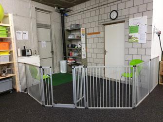 Hunde Trainingshalle Eingangsbereich Hunde Gesund Bewegen