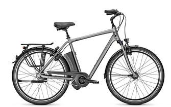 Raleigh Dover E-Bike Impulse Motor