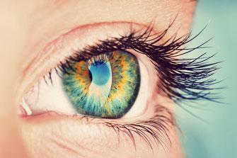 Auge von dicht dran fotografiert