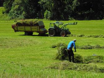 Kooperation Landwirt - LBV-Ehrenamtler (Foto: Horst Guckelsberger)