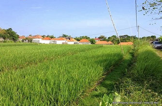 Kerobokan land for sale