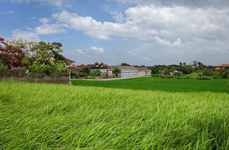 Land on offer for sale in Canggu, South Bali.