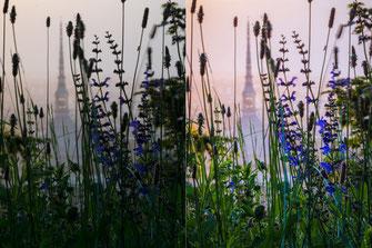 Confronto tra formato RAW e JPEG