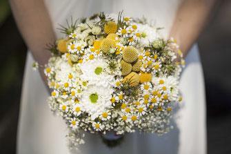 Hochzeiten & Bildreportagen