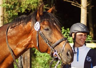Ausbildung Pferde Beritt Reitlehrer Turniere Wera Grommes TOS Dr. Grommes