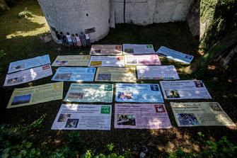 SAF Kirchheim - Fotogalerien aus dem Seminarleben