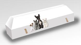 cercueil-en-carton-ab-cremation-brigitte-sabatier-chiens-et-chats