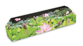 cercueil-en-carton-ab-cremation-brigitte-sabatier-champ-de-lotus