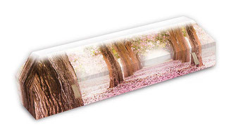 cercueil-en-carton-ab-cremation-brigitte-sabatier-chemin-eternel