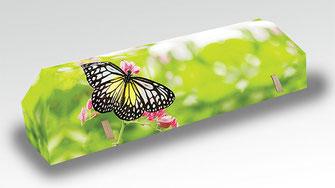 cercueil-en-carton-ab-cremation-brigitte-sabatier-papillon-ete